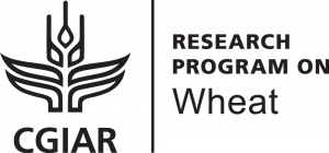 CGIAR Research Program on Wheat (WHEAT)